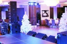 Новогодний корпоратив в ресторане Бархат